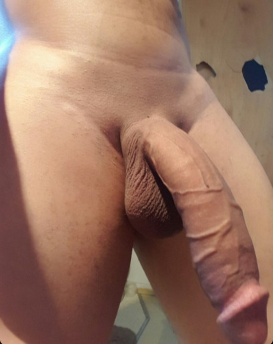 video plan cul gay photo penis amateur
